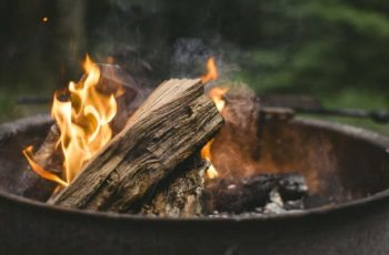 The Best Wood For Fire Pit That You Can Find