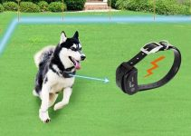 How does a wireless dog fence work